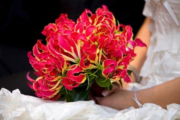 а. цветы глориоза 1