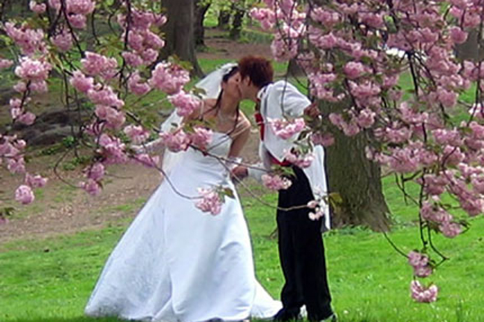 а. свадебные приметы для жениха и невесты