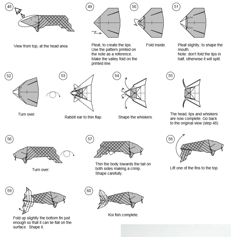 karp-iz-deneg-origami-shema-karp-dollars-5.png