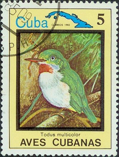Kubinskij-todi-Todus-multicolor-mnogotsvetnaya-ptichka-foto-cuban-tody-na-markah...