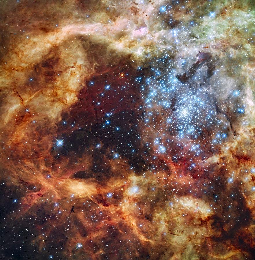V-tumannosti-Tarantul-obnaruzheny-zvezdy-giganty-v-100-raz-bolshe-solntsa