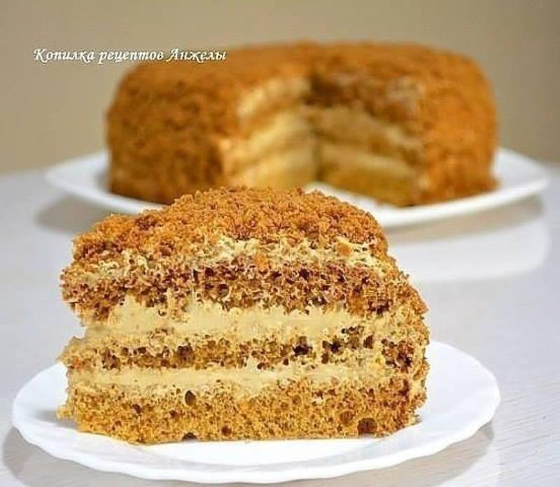 tort-medovik-beskvitnyj