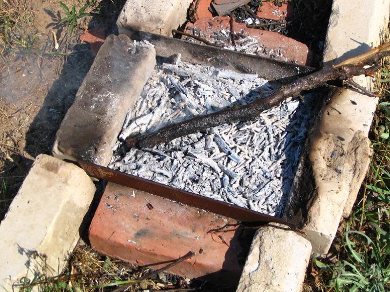 kak-primenyat-drevesnuyu-zolu-v-ogorode-3