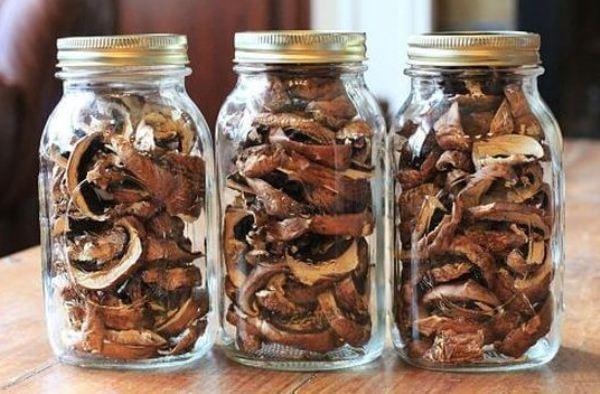 Sposoby-sushki-gribov-hranenie-i-konservirovanie-gribov