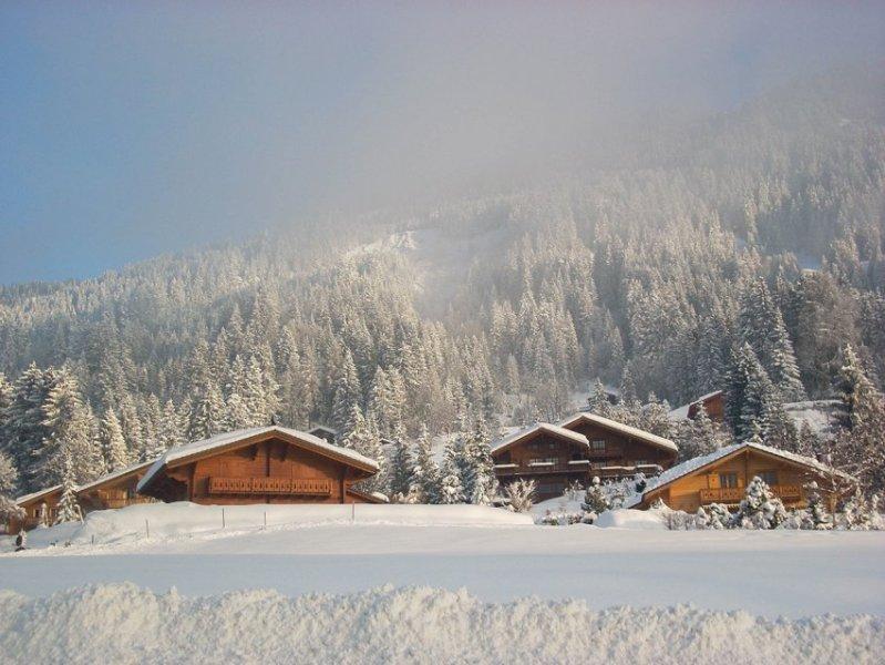 Samye-luchshie-zimnie-kurorty-SHvejtsarii-Villar-alpijskij-shal-v-gorah