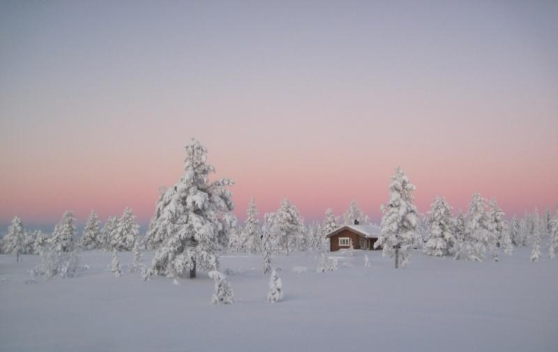 Borealnye-lesa-zimoj-Norvegiya