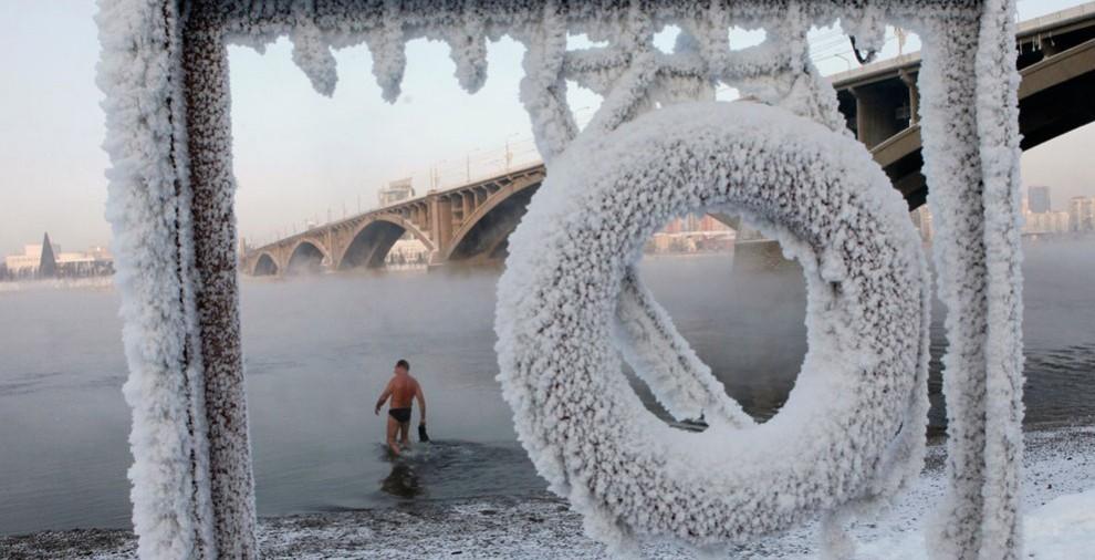 Morzh-kupaetsya-v-reke-Enisej-pri-moroze-20-S-v-Krasnoyarske-avtor-Ilya-Naymushin