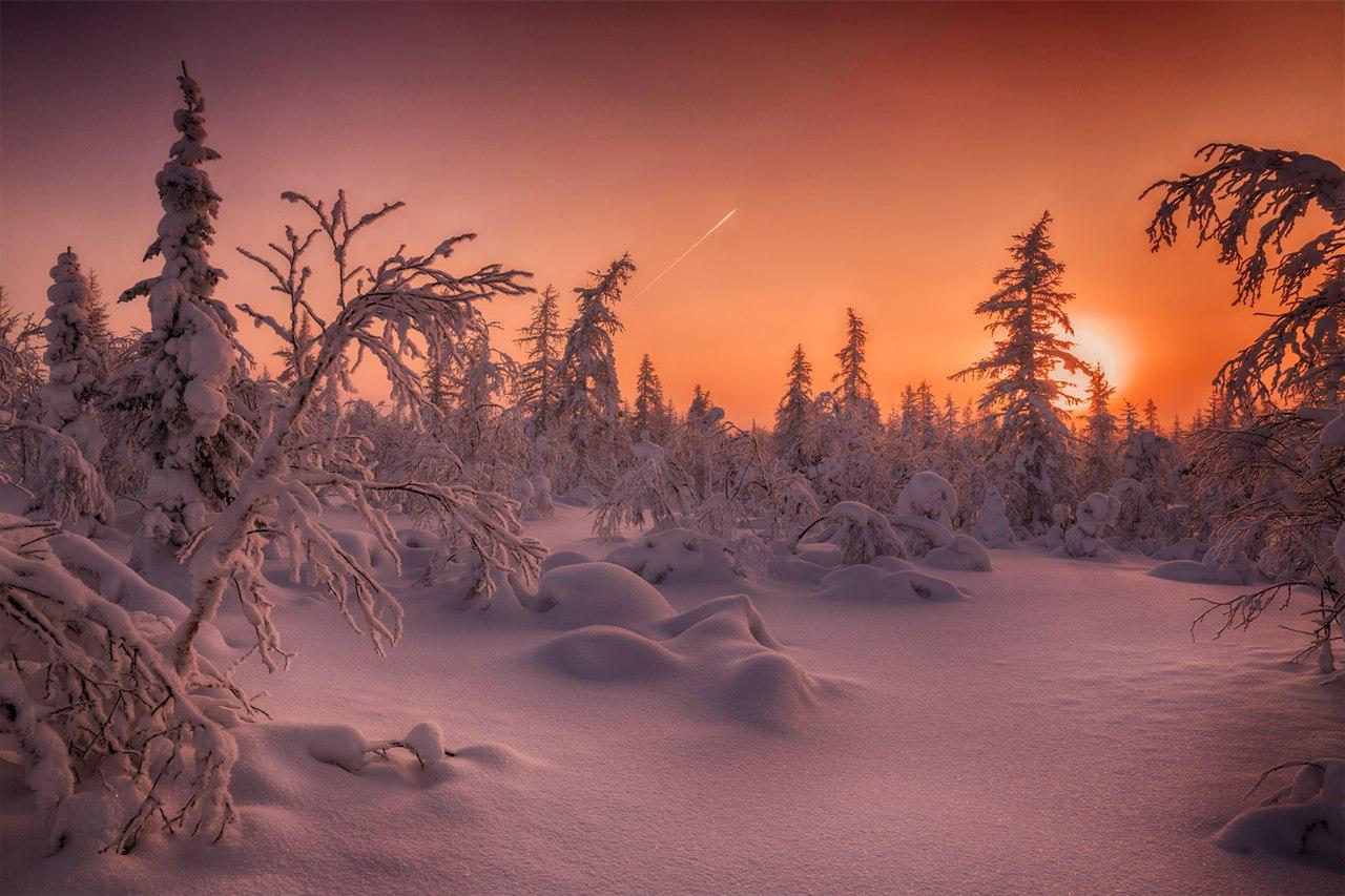 Zakat-v-tundre-YAmalo-Nenetskogo-avtonomnogo-okruga.-Avtor-foto-Evgenij-Kuzhilev...