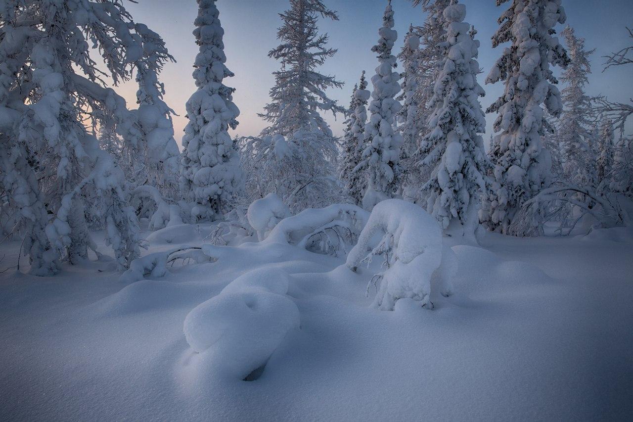 Zima-v-Rossii.-Salihard-Sibir-YAmal.-avtor-snimka-Evgenij-Kuzhilev