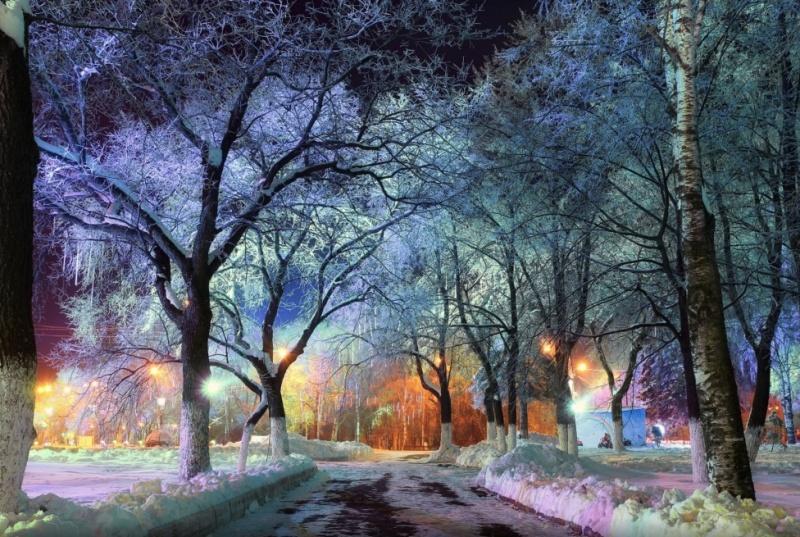 zima.-gorodskoj-park-v-Vologde-avtor-kichigin-sergej