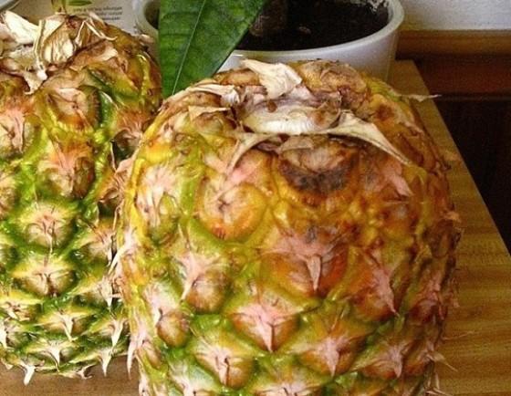 Poleznye-sovety-i-malenkie-hitrosti-kak-pravilno-hranit-ananasy-chtoby-oni-byli-sladkimi