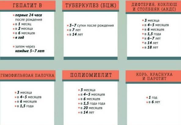 kakie-privivki-nuzhny-vaktsinatsiya-vzroslyh-ot-papillomatoza-tablitsa