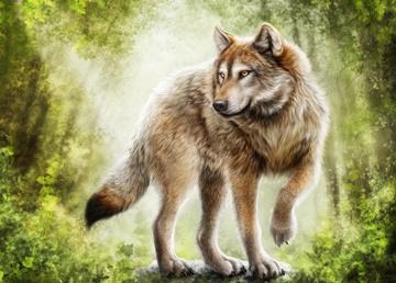 slavyanskij-zverinyj-goroskop-znachenie-lyuten-volk