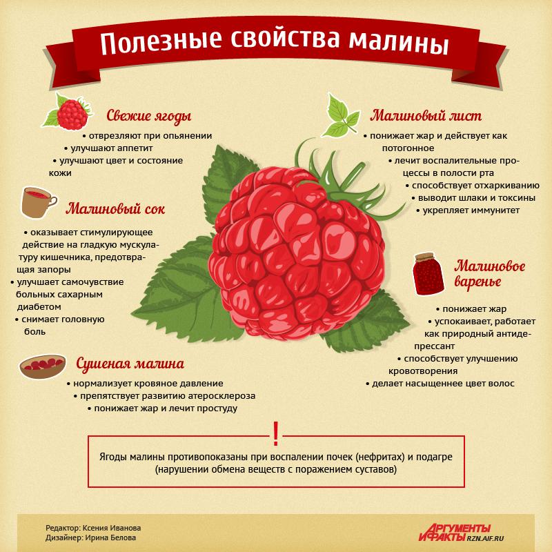 infografika-poleznye-svojstva-maliny