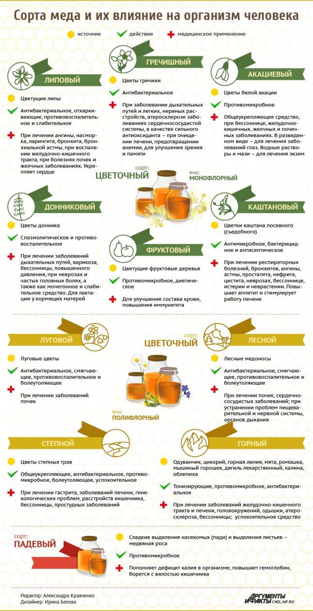 infografika-sorta-myoda-i-ih-vliyanie-na-organizm-tablitsa