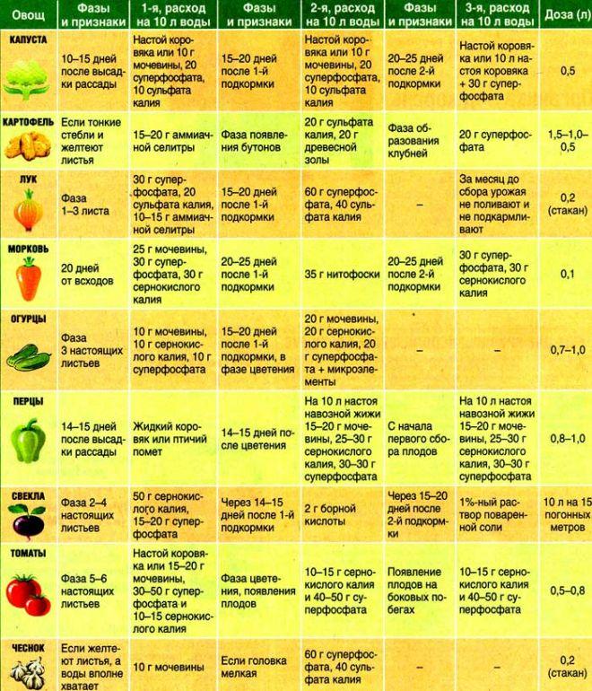 infografika-tablitsa-podkormok-ovoshhej