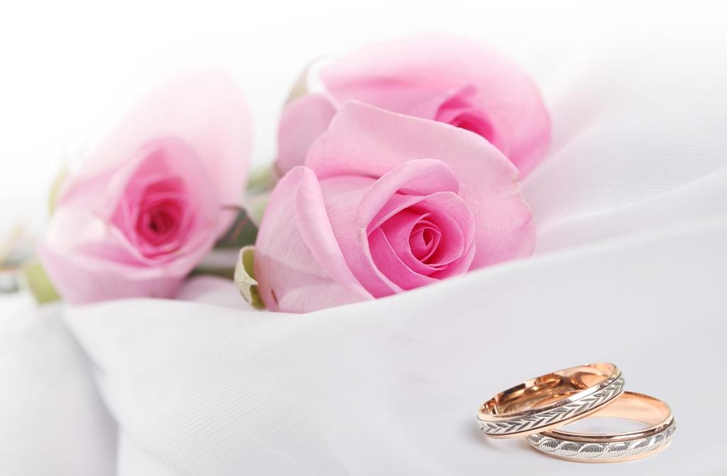 Розы для открытки свадьба, открытка днем