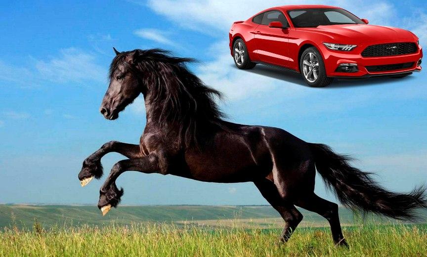 Test-Ugadajte-v-chest-kakih-zhivotnyh-nazvany-vse-eti-avtomobili-na-foto-avto-Ford-Mustang
