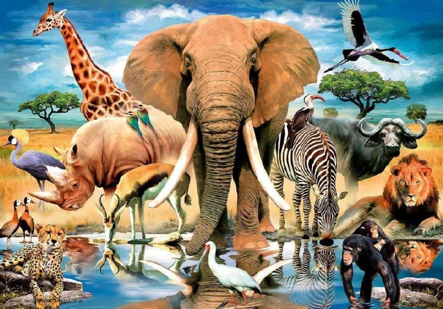 нашого картинки все живые существа красивые места, главные