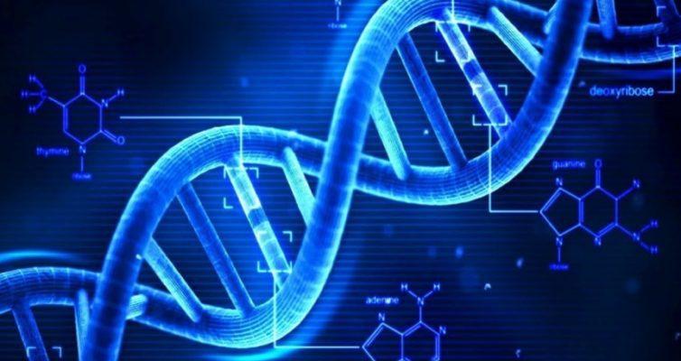 Test-o-Genah-i-DNK-vam-chto-nibud-izvestno-proverte-svoi-znaniya-otvetiv-na-8-voprosov-testa-molekula-dnk-spiral-genom