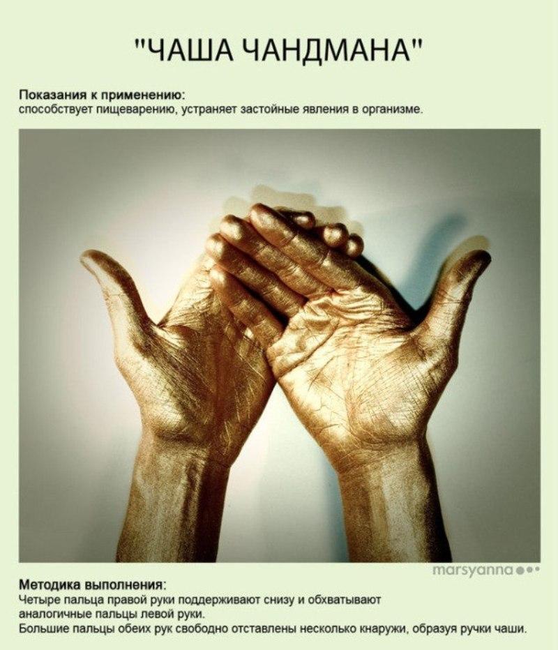 zametki-Jogi-Mudry-Mudra-CHasha-CHandmana-foto-29