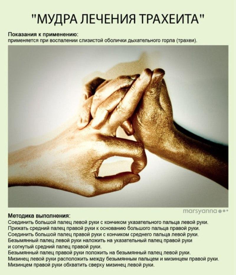 zametki-Jogi-Mudry-Mudra-Lecheniya-Traheita-foto-17