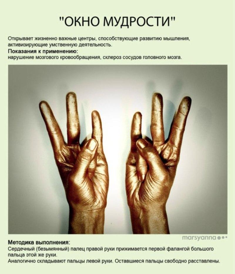 zametki-Jogi-Mudry-Mudra-Okno-Mudrosti-foto-21