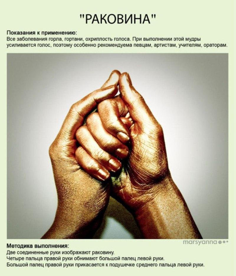 zametki-Jogi-Mudry-Mudra-Rakovina-foto-24