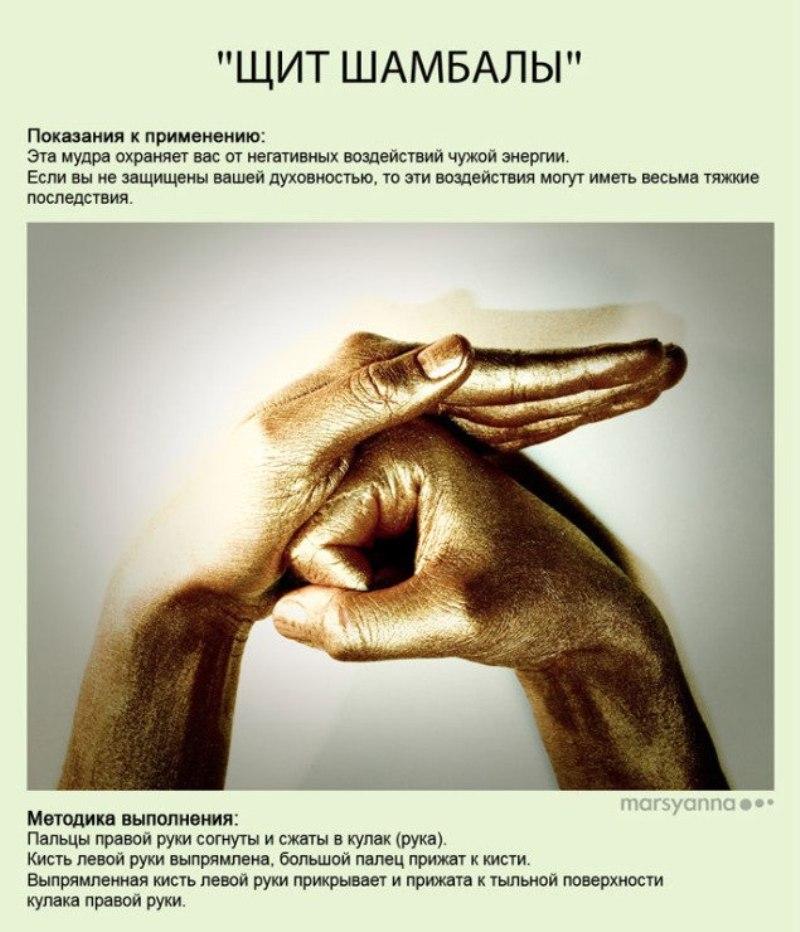 zametki-Jogi-Mudry-Mudra-SHHit-SHambaly-foto-30