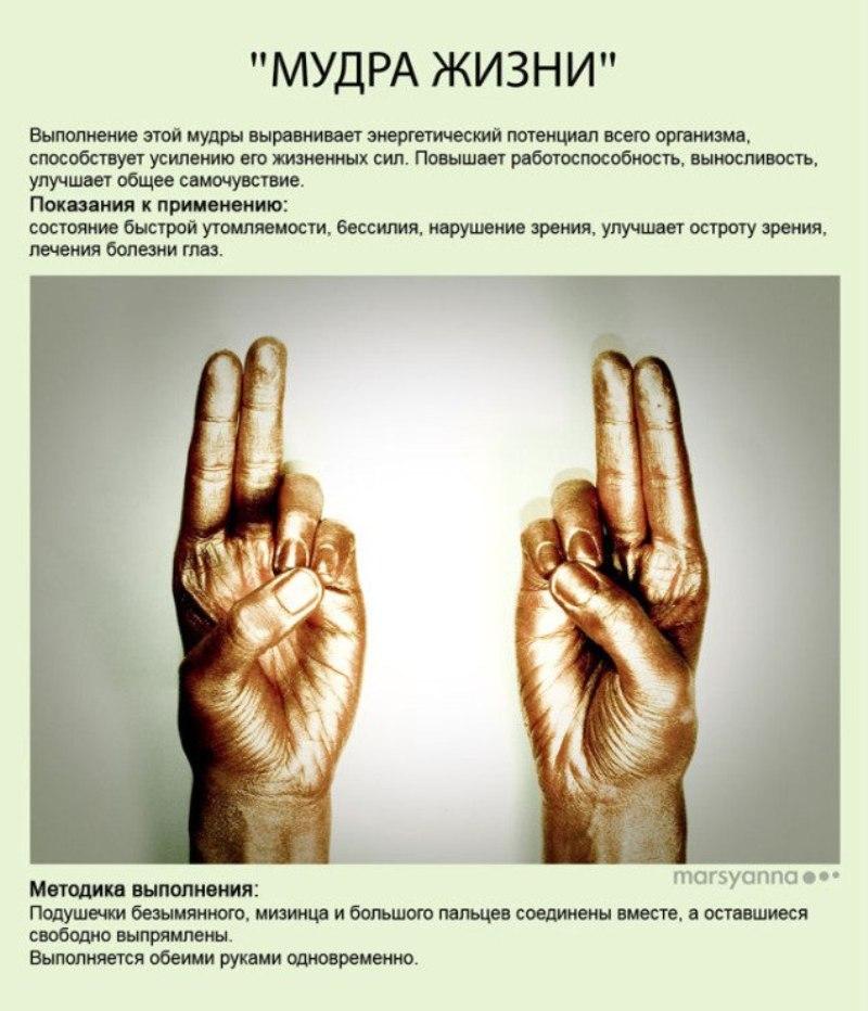 zametki-Jogi-Mudry-Mudra-ZHizni-foto-12