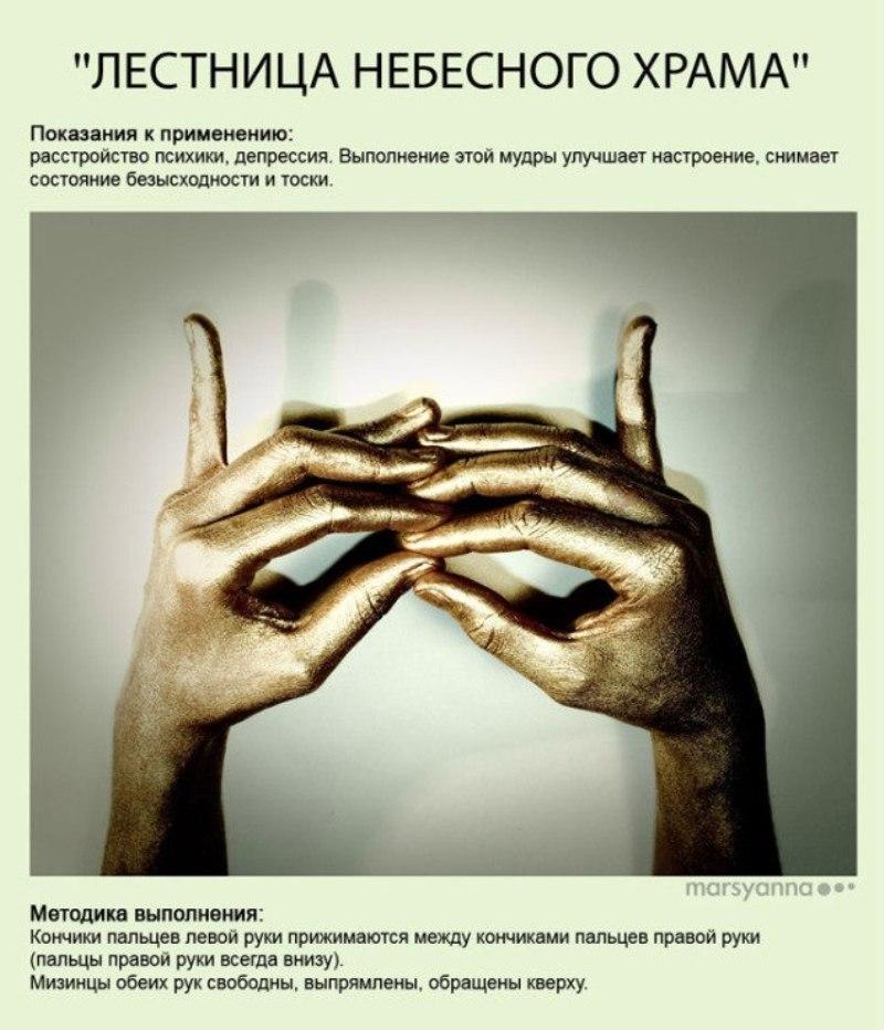 zametki-Jogi-Mudry-Mudra-lesnitsa-nebesnogo-hrama-foto-6