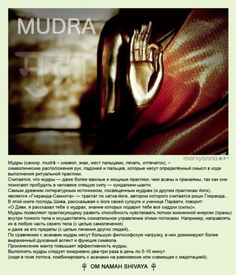 zametki-Jogi-Mudry-foto