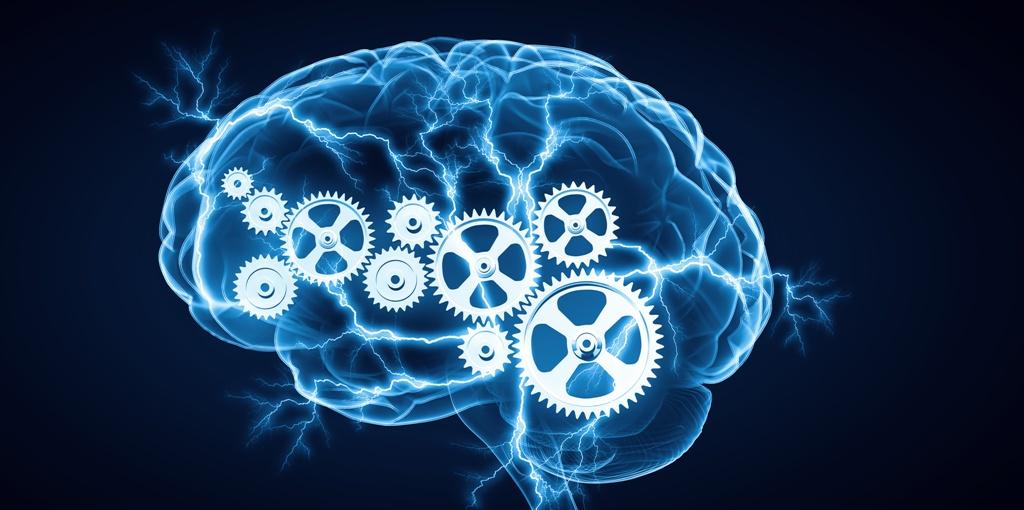 Test-Mozg-Geniya-proverte-kak-rabotaet-vash-test-na-proverku-raboty-mozga