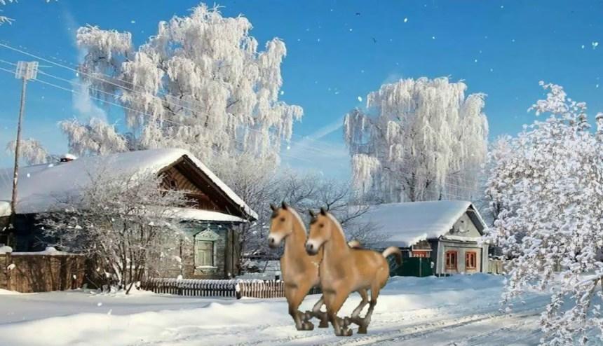 zimnie-primety-o-snege-i-zimnem-periode-foto-zima-v-derevne