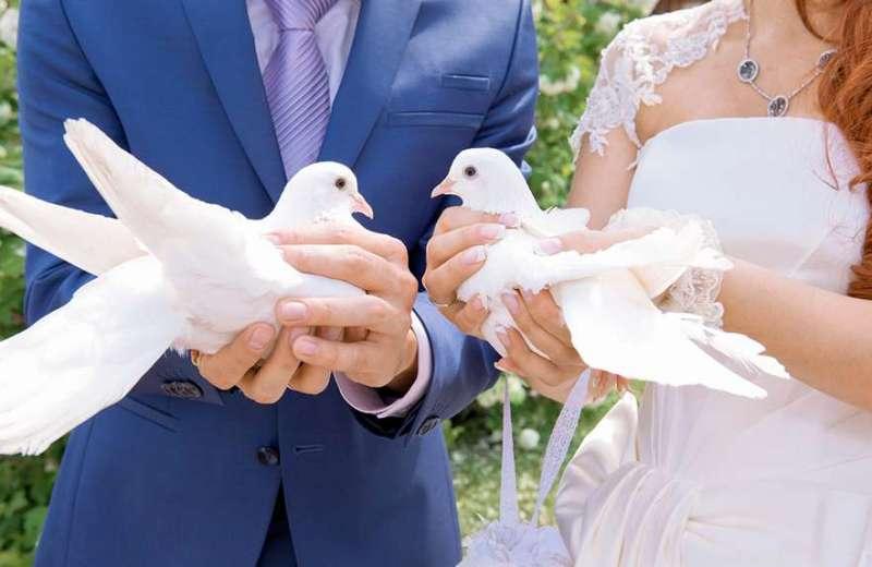 svadebnye-primety-15-maloizvestnyh-svadebnyh-primet-i-poverij-foto-zhenih-i-nevesta-s-golubyami