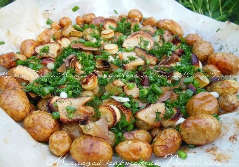 kak-prigotovit-molodoj-kartofel-vkusno-i-bystro-TOP-4-retsepta-foto-blyuda-piknik-molodoj-kartofel-s-chesnokom-i-salom