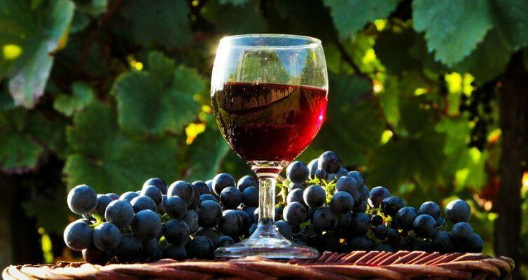domashnee-vino-7-sekretov-vkusnogo-domashnego-vina-retsept-foto-krasivoe-domashnee-vino-v-bokale
