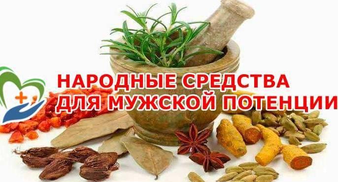 otvary-dlya-potentsii-po-narodnym-retseptam-foto-narodnye-sredstva-dlya-muzhskoj-potentsii