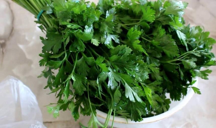 petrushka-poleznye-svojstva-zeleni-primenenie-i-protivopokazaniya-foto-vitaminnaya-aromatnaya-zelen...