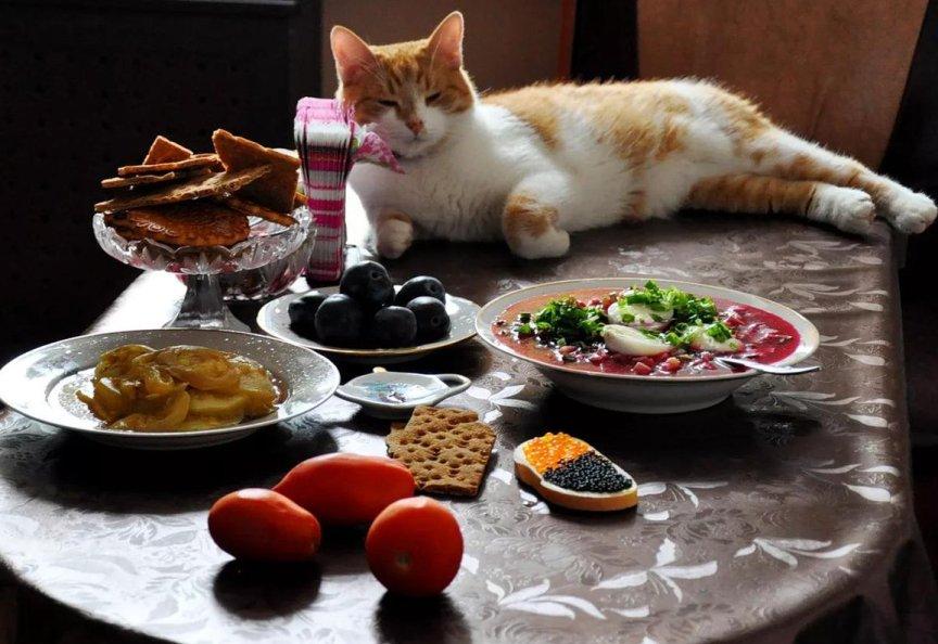 всего, изменения еда на ночь для поздравления массы