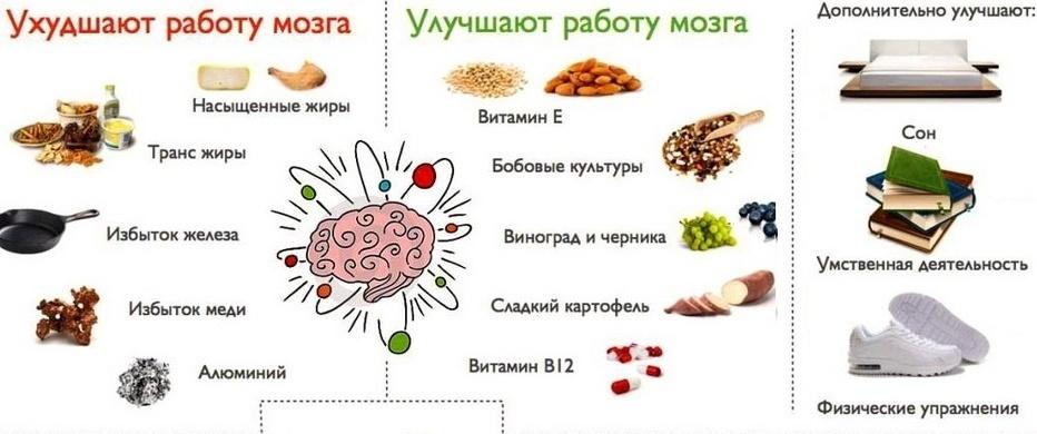 dieta-dlya-horoshej-kontsentratsii-i-krepkoj-pamyati-foto-produkty-dlya-mozga...