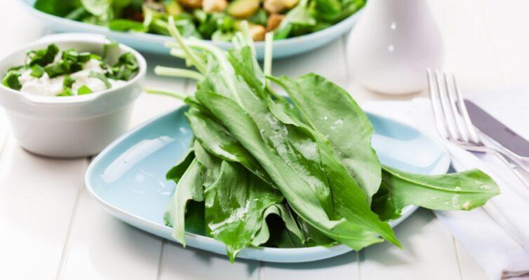 vesennij-salat-s-cheremshoj-retsept-s-oreshkami-i-syrom-foto-salat-cheremsha-listya