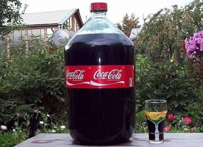 koka-kola-efektivnoe-sredstvo-dlya-borby-s-vreditelyami-i-boleznyami-rastenij-v-ogorode