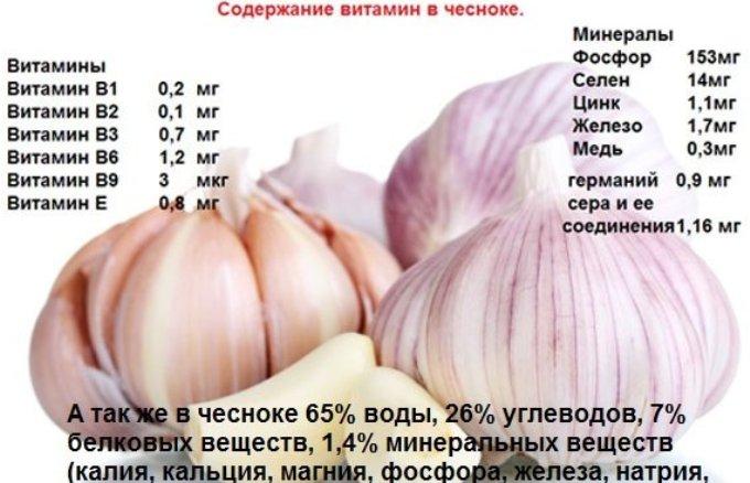 chesnok-i-ego-lechebnye-svojstva-s-nauchnoj-tochki-zreniya-tablitsa-soderzhanie-poleznyh-svojstv-i-vitamin-chesnoka