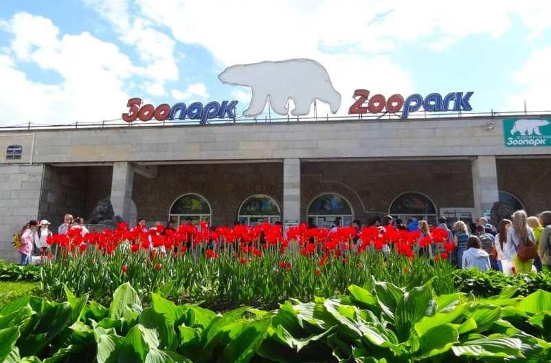 5-samyh-interesnyh-zooparkov-Rossii-gde-stoit-pobyvat-detyam-i-vzroslym-foto-leningradskij-zoopark-v-sankt-peterburge...
