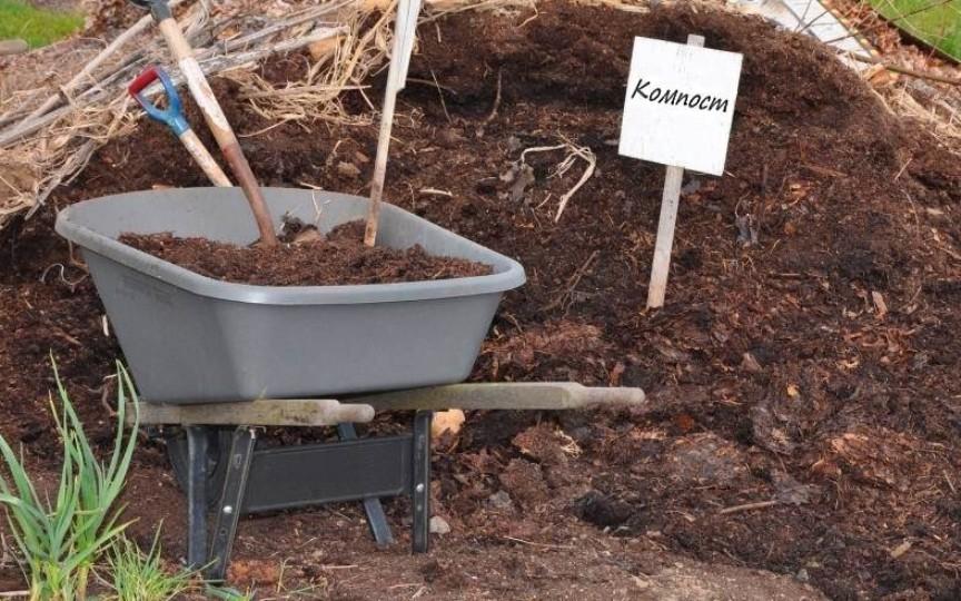 kak-gotovit-kachestvennyj-kompost-dlya-ogoroda-kruglyj-god-foto-kompost-organicheskoe-udobrenie