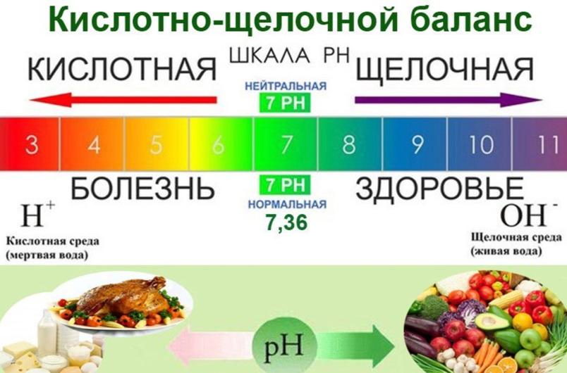 30-shhelochnyh-produktov-kotorye-nuzhny-v-pitanii-kazhdyj-den-spisok-i-opisanie-kazhdogo-shhelochnogo-produkta...