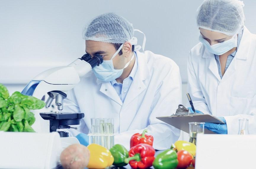 eksperty-nazvali-5-produktov-bogatyh-tsinkom-znachitelno-povyshayushhie-zashhitu-ot-koronavirusa