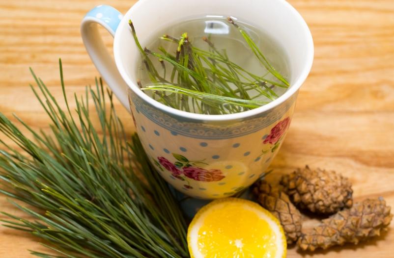 effektivnye-dlya-immuniteta-napitki-kak-prigotovit-samye-poleznye-foto-hvoya-s-limonom-chaj