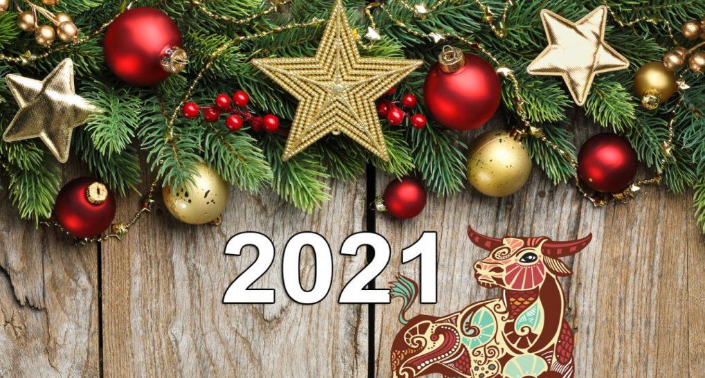 kakim-okazhetsya-2021-god-dlya-znakov-zodiaka-bliznetsy-oven-kozerog-telets-i-lev-novogodnij-goroskop...